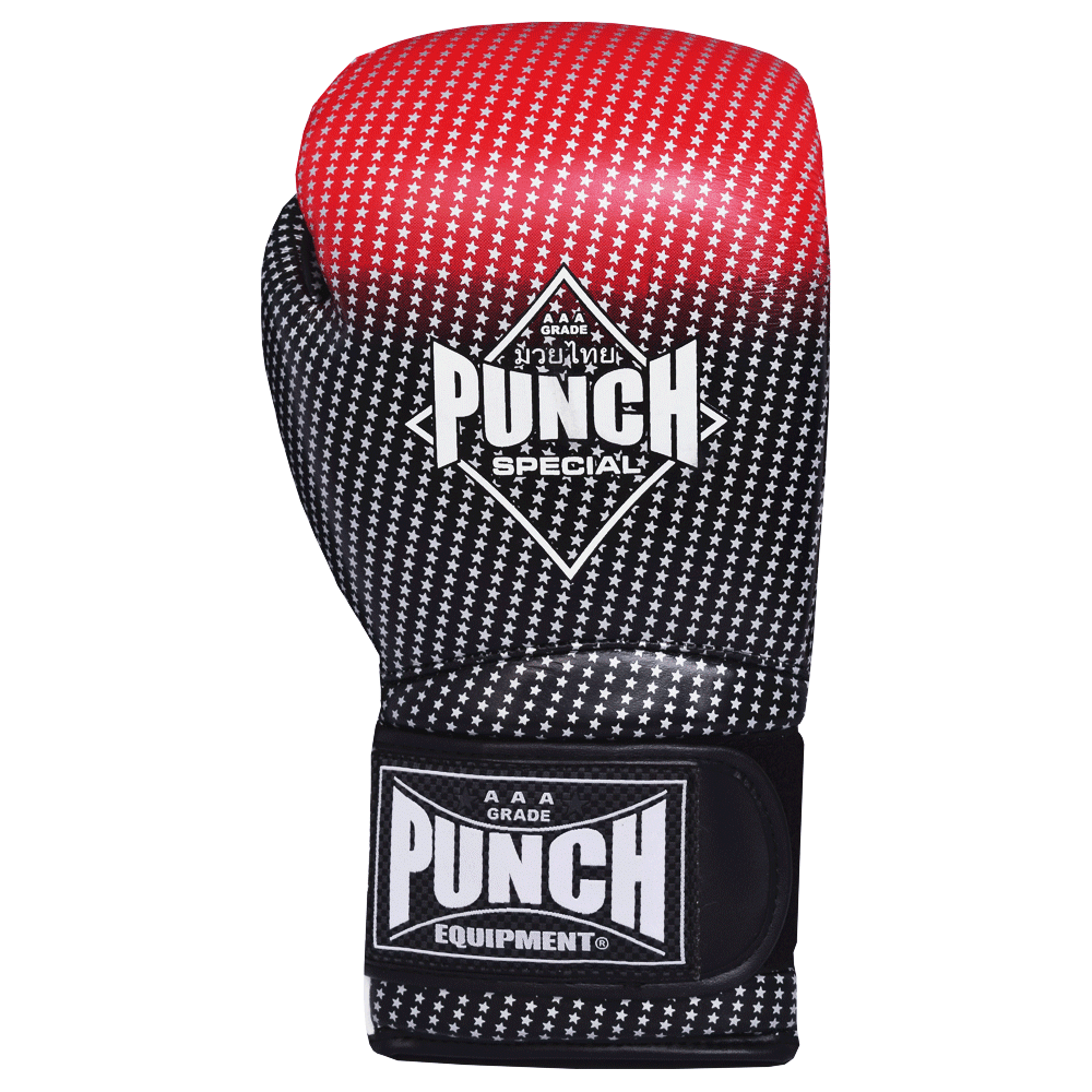 Punch Special Boxing Gloves